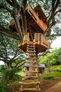 Looking for lumber and plywood to make treehouse for my two boys