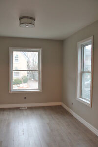 Fully Renovated 1 Bedroom- Downtown Kitchener