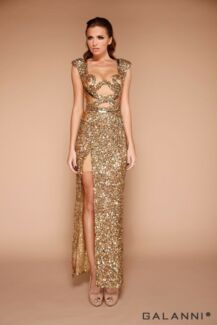 Galanni Designer Dress