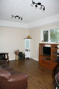 3 bedroom basement suite, north of Airdrie off Just off #2