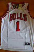 NEW w tags Derrick ROSE All Embroidered Jersey