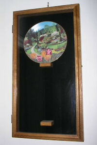 Collector plates display case