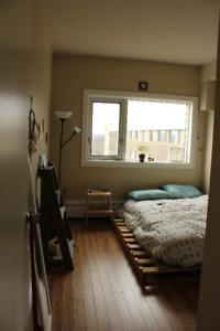 2 Bdr Apartment Central Halifax/Dalhousie/SMU Sublet