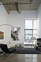 Beautiful Loft Condo for Rent - 2nd Avenue Lofts (Downtown)