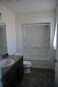 Beautiful one bedroom apartment for rent in Elmira Kitchener / Waterloo Kitchener Area image 1