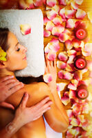 Experienced Hairstylists & Esthetician