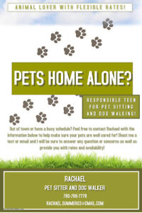 Pet Sitter with Flexible Rates!