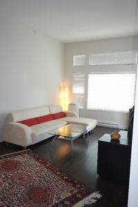 New 1-Bedroom Penthouse 12ft Ceilings District Crossing Furnishe