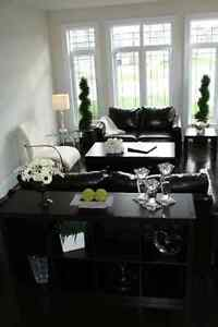 Decor Rest Leather couches and other living room furniture / dec