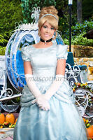How about a visit from the glass slipper princess!!