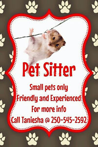 Pet sitter for small pets
