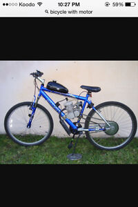 Looking for bicycle with motor