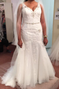 Ivory Wedding dress and a long vail