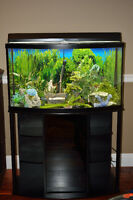 Complete Aquarium with stand and accessories