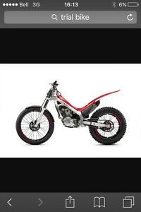 Looking for a trial bike