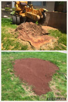 Stump Removal- stump grinding - tree removal- stumps