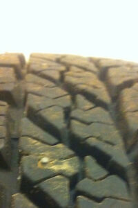 FOUR. 195/65/15.  STUDDED WINTERS ON RIMS.  $500.