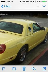 2002-2005 Thunderbird Hard Top Only; Toit dur seulement