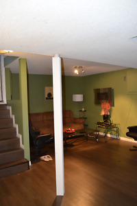 Nice and clean basement suite for rent