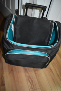 Travel case with handle and roll wheels