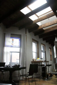 SUMMER SUBLET in the PLATEAU (May-August)