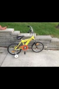 Kids Two Wheeler Bike
