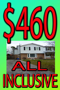 Student House Rental UOIT Durham College DC Rooms for rent