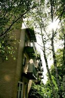 2 BDRM APT-JUBILEE&WALNUT-ALL UTIL INC-AVAIL SEPT 1!!!!!!!!!!!!!