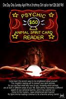 Psychic Animal Spirit Readings