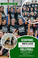 Scorpions Youth Winter Volleyball League Born 2000 - 2007