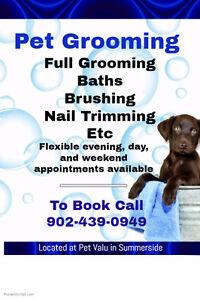 GROOMINGDALE'S ~Grooming in Summerside appointments this week!!