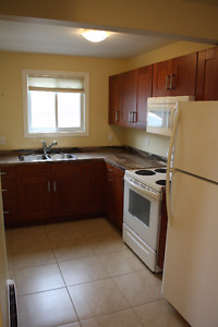 Renovated 2 bedroom on Hamilton Ave
