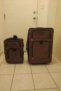 Delsey 2-PC Luggage Suitcase Set and Carry-On