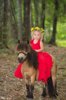 Pony birthday parties come to u or our farm