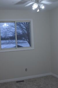 Newly Updated Semi Detached Raised Bungalow in St Marys, ON Stratford Kitchener Area image 5