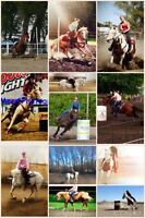 HORSE TRAINING/CONDITIONING at Roots N Wings Ranch!