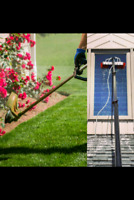Window cleaning, landscaping services