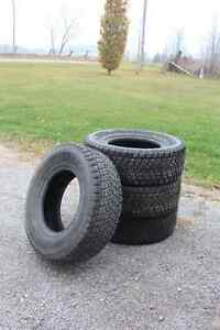Bridgestone Blizzak DM-Z3 Winter Truck Tires