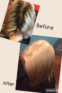 Hairstylist taking new clients! St. John's Newfoundland image 5