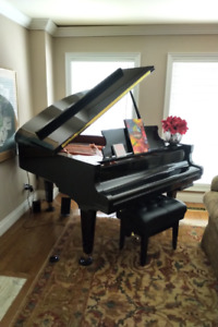 Shimmel Baby Grand Piano with Piano Disc System