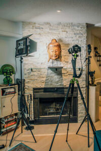 Like NEW Portrait Lighting kit with LEDGO 900s, two stands etc.