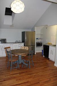 4 Bedroom,11/2 Bath Student Apartment - 3 Minute Walk to Dal