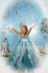 NOW BOOKING CINDERELLA & FROZEN PHOTO SESSIONS London Ontario image 2
