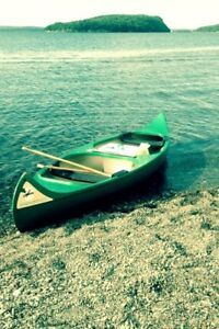 Wedco canoe for sale, with cart, paddles, and foam carrying kit