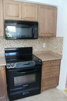 KITCHEN CABINETS/DRAWERS, SINK/FAUCET & COUNTERTOP FOR SALE