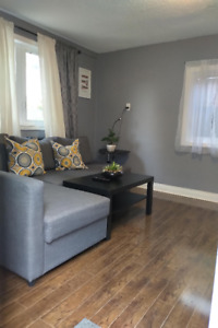 Furnished 2 bedroom apartment @ Dufferin and Dupont Main floor