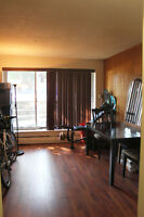 5 1/2 for rent Plateau Mont-Royal - September (Heating included)