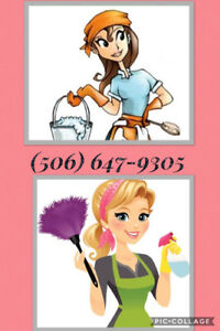 Cleaner/cleaning/housekeeper