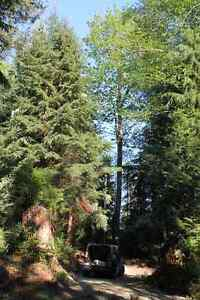 Gambier Island Land for sale + Sleeper Cabin $119k