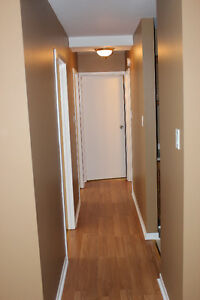 Affordable 2 Bedroom Condo- Vendor will pay 1st Years Condo Fees St. John's Newfoundland image 5